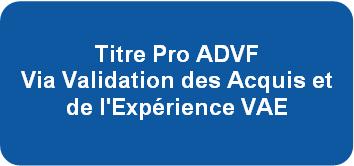 Titre Pro ADVF Via Validation des Acquis et de l'Exprience VAE